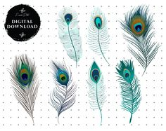 Feather Clip Art, Tribal Feather, Backgrounds Free, Printable Designs, Accent Furniture, Crafting, Zip, Digital, Etsy