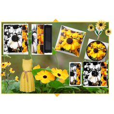 """Black-eyed Susans"" by stine1online on Polyvore"