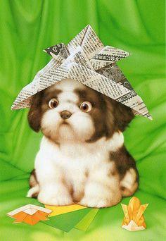 Muramatsu Dog 44 | Flickr - Photo Sharing!