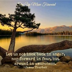 Let us not look back in anger, nor forward in fear, but around in awareness.  ~James Thurber