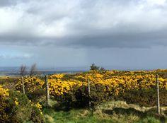 MHBD's Blog: Dublin Mountains - Lead Mine