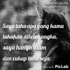 #curhatankucing #cat #quotes #galau #curhat #katakata #rahmatprayudi