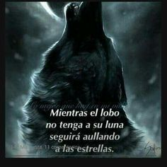 wolf frases - Buscar con Google