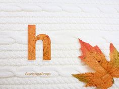 Lowercase letter h with glitter leaf and sweater knit. #fall #autumn #alphabet…