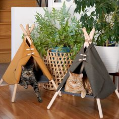 Your cat is probably super duper cute but wait until you see them in the Adventure Tent, a pawsome cat bed / cat hammock / cat tent in a modern design. Cat Tree House, Cat House Diy, Camping With Cats, Cat Camping, Cat Wall Furniture, Cat Hotel, Cat Plants, Pet Corner, Cat Tent