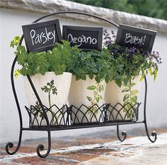 I love the chalk board picks! (can make em long for those long growing herbs)
