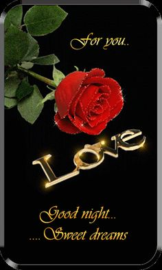 Good Night and sweet dreams I love you Funny Good Night Quotes, Good Night Love Messages, Good Night Greetings, Morning Love Quotes, Good Night Wishes, Good Night Flowers, Lovely Good Night, Romantic Good Night, Good Night Gif