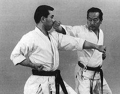 Riken Kyokushin Karate, Awkward, Martial Arts, Combat Sport, Martial Art