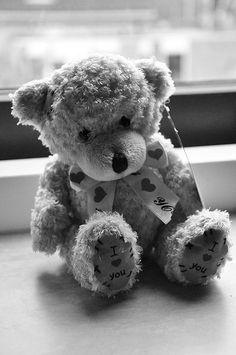 Teddybear by ChantalAlice, via Flickr