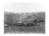 Framed Harvest of Death, Gettysburg, 1863