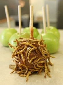 ARIZONA MEALWORM: Mealworm covered Caramel Apples in Phoenix, Oct. 2011 Along with deep-fried crickets, the Arizona Exposition & State Fair's Chef du' Jour booth sells caramel apples dipped in mealworms. Gross Food, Weird Food, Crazy Food, Bad Food, Funny Food, Theme Halloween, Halloween Treats, Halloween Recipe, Halloween 2020