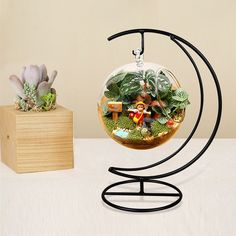 moon shape micro landscape iron rack House Plants Decor, Plant Decor, Hanging Glass Terrarium, Glass Vase, Diy Floor Lamp, Iron Holder, Metal Plant Stand, Pot Jardin, Decoration Plante