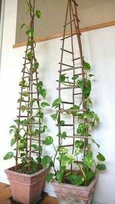 Garden Yard Ideas, Garden Crafts, Garden Projects, Garden Path, Garden Bed, Easy Garden, Diy Crafts, Hanging Plants, Indoor Plants
