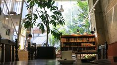 Tokyo: Coffee At Haden Books, A Little Pocket Hideaway In Omotesando