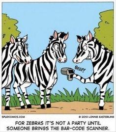 Funny Pictures – ha ha !