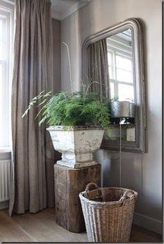 Indoor Garden, Indoor Plants, House Plants Decor, Flower Decorations, Wicker Baskets, Rustic Decor, Asparagus, New Homes, House Design