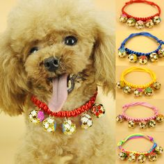 Find More Collars Information about 1pc Pets Hand woven Colorful Bells Collar Adjustable Dog Collar Cotton Rope Belt Pet Puppy Cat Necklace Bell Collars 1941DB,High Quality belt radio,China collar tuxedo Suppliers, Cheap collar day from NAAN GUO Store on Aliexpress.com