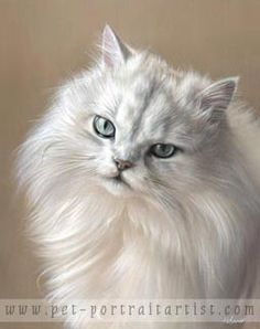 Oil Pet Portraits | Nicholas Beall painting pet portraits in oils ...