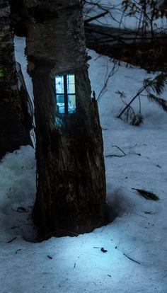 Fairy Tree House, The Enchanted Wood photo via labendita Enchanted Wood, Fairy Tree, Fairy Garden Houses, Fairy Gardens, Miniature Gardens, Tree Trunks, Fairy Doors, Fairy Land, Photo On Wood