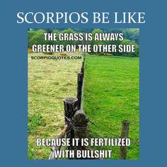 "13 ""Scorpios Be Like"" Meme   Scorpio Quotes"