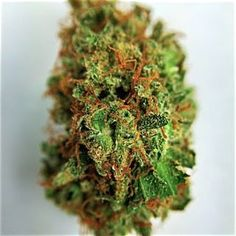 Weed Online Supplier, is a one stop,fast,discreet,friendly, reliable dispensary that ship quality marijuana. We offer Quality cancer cannabis oil and top shelf marijuana for patients with illness like cancer, pain,insomnia, anxiety,liver problem, epilepsy and more..White Widow,sour Diesel,Hawaii-Skunk,Hindu Kush,afghani kush,Super Silver Haze,OG Kush,blue dream,shatter,vape cannabis oil cartridges Text or Call:+1 978 295-0424, visit https://www.weedonlinesupplier.com