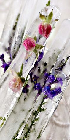 Ice Sticks embedded with Lavender and Rose Buds - what a gorgeous way to cool off a tall drink!