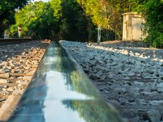 track by mlong_2
