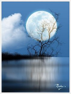 nature, the moon, once in a blue moon ♥ Look At The Moon, Moon Dance, Shoot The Moon, Moon Shadow, Sun Moon Stars, Moon Pictures, Moon Magic, Moon Rise, Beautiful Moon