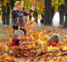 Der Herbst hat begonnen! – Lernspaß für Kinder