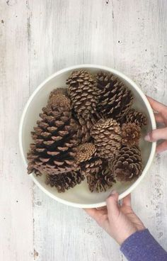 Here's why pinecones are DEFINITELY not just for fall wreaths