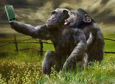 Ape Selfie by iamdogsmom, Flickr