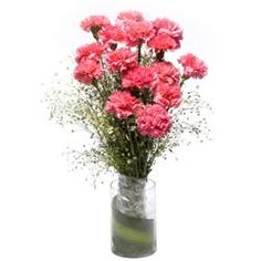 Check out our New Product  Pink Sweet Heart GlassVase Arrangements Arrangement of 15 Pink Carnations in a glass vase  ₹809