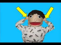 The 5 Senses Song song by Dr Jean Feldman video by Mr Harry mp4 - YouTube