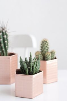 DIY Hexagon Copper planters - these are gorgeous and so easy to make!!! #copper #planter #cactus