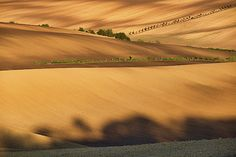 Autumn light and shadow in countryside by Pavel Rezac Autumn Lights, Light And Shadow, Tuscany, Beverly Hills, Countryside, Fields, Country Roads, Tuscany Italy