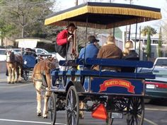 Charming Charleston, South Carolina: Top Things to See and Do: Charleston Guided Tours