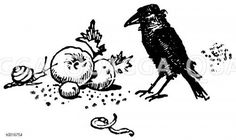 Rabe, Apfel, Schnecke