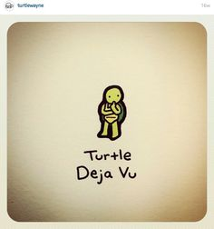 Deja Cute Turtle Drawings, Turtle Sketch, Animal Drawings, Cute Drawings, Mini Turtles, Cute Turtles, Baby Turtles, Kawaii Turtle, World Turtle Day