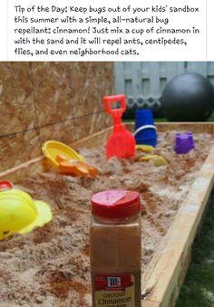 Sand Box & Cinnamon