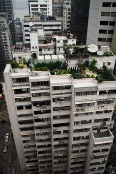 Roof-top garden. Wan Chai, Hong Kong