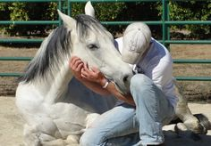 Horses as Healers information and stories on horse psycotherapy Equine Assisted Therapy Learn about #HorseHealth #HorseColic www.loveyour.horse
