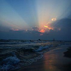 Shoreline beauty