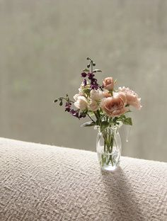 IMG_8682.jpg (beautiful mini flowers)                                                                                                                                                                                 More