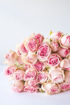 Beautiful Bouquet of Pink Roses My Flower, Fresh Flowers, Pretty Flowers, Pretty In Pink, Pink Flowers, Rosa Rose, Beautiful Roses, Romantic Roses, Beautiful People