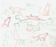 Sarah's Sketches: November 2007