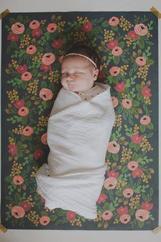 Charleston newborn photos by Katie Purnell   100 Layer Cakelet