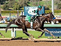 Hall of Fame jockey Gary Stevens delivered an icy ride and grade I winner Mor Spirit responded full of run in the $150,000 Robert B. Lewis Stakes (gr. III) at Santa Anita Park. 2/6/16