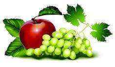 Druiven gezond voor een slanke lijn en een platte buik   Recepten? Druiven zijn super gezond, daar twijfelt niemand nog aan. Druiven barsten van alle mogelijke gezonde voedingsstoffen waaronder vooral vitaminen, mineralen, sterke antioxidanten en voedingsvezels.   Maar daarnaast vind je in druiven ook fructose of druivensuiker. Is fructose