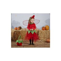 Toddler Strawberry Fairy Tutu Costume   Pottery Barn Kids ($66) found on Polyvore