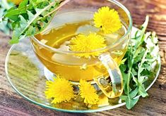 All About Dandelion: Recipes, Harvesting Tips and More - Food and Recipes - Mother Earth Living Healing Herbs, Medicinal Herbs, Natural Health Remedies, Herbal Remedies, Dandelion Root Tea, Dandelion Benefits, Dandelion Recipes, Easy Drink Recipes, Medicinal Plants